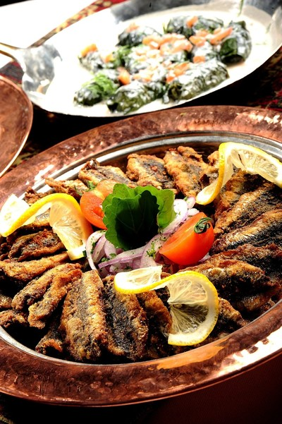 Hamsi season: the return of Turkey's national fish