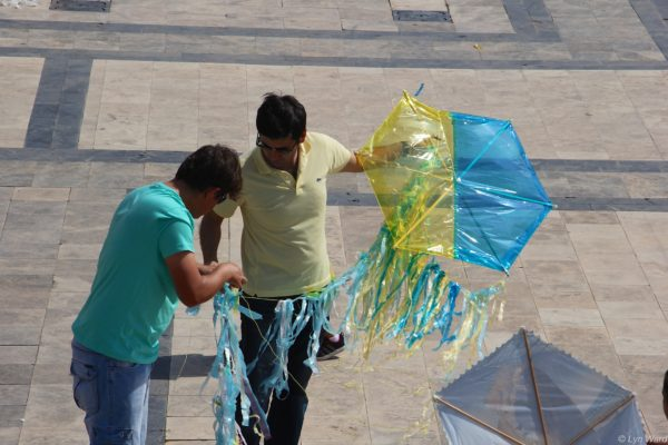 Kites of many types and colours