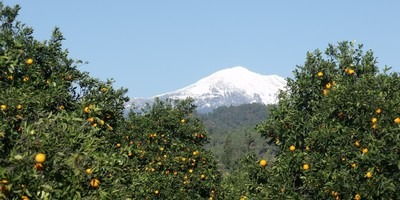 CalDag and Oranges - The view from Yaniklar to the inposing mountain near Fethiye