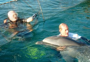 Dolphin Rehabilitation expert Stephen McCulloch, Founder and Program Manager of Harbor Branch Oceanographic, Florida with Misha and Tom