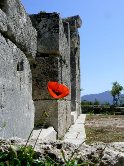 The ruins of Kaunos are just one of the many day trips to take when on holiday in Fethiye