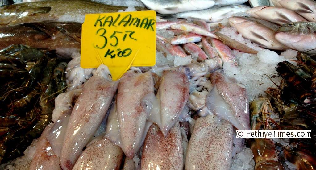 Calamari for Sale at Fethiye Fish Market