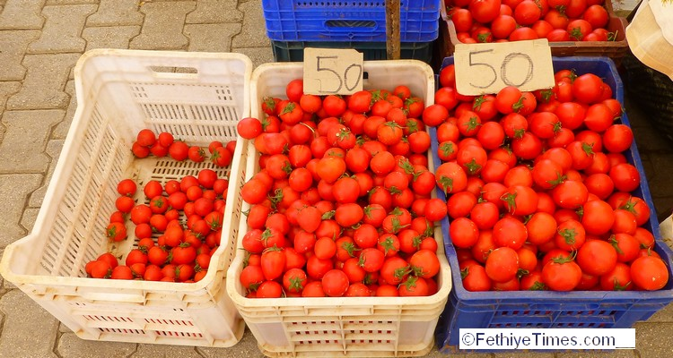 The price of tomatoes hit rock bottom last week. Shoppers at the local Fethiye market could buy locally grown tomatoes for as little as 50 kurus a Kilo – just 14 pence.
