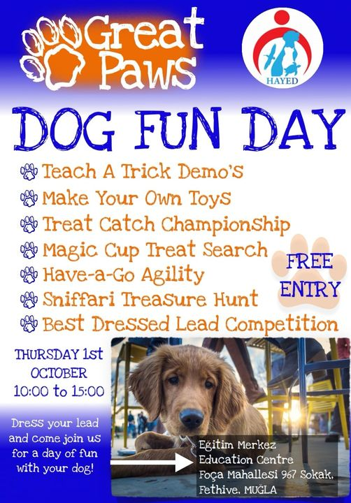 Great Paws & HAYED - Dog Fun Day