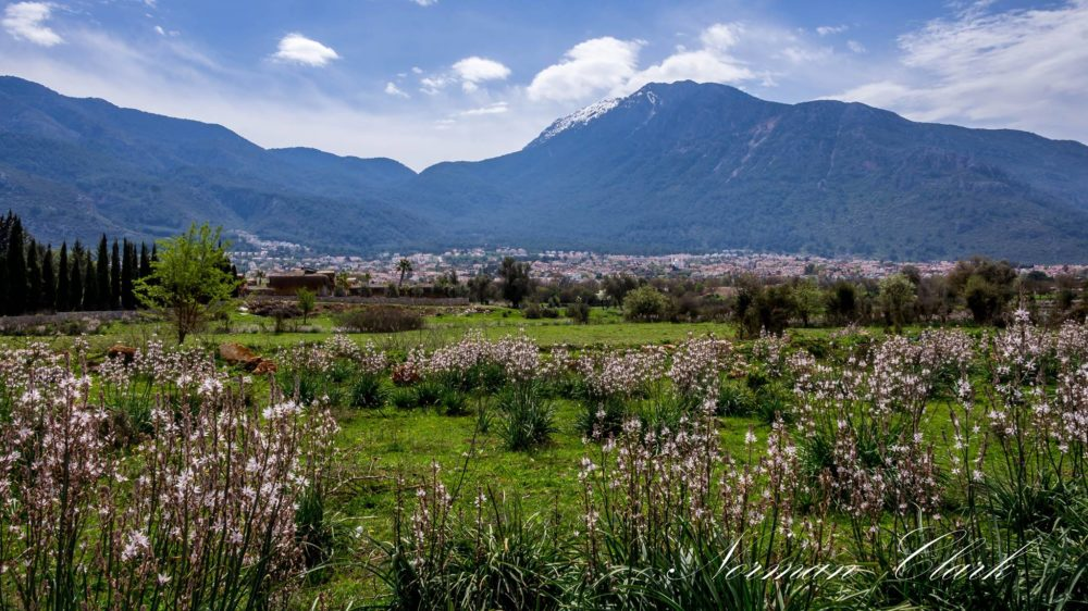 Nature Photography Day - the Fethiye way