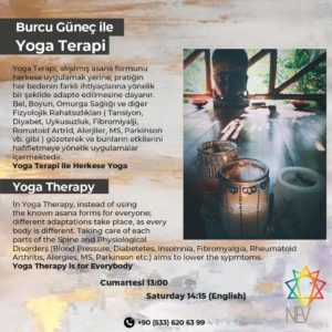 Viniyoga™  - Yoga Therapy with a difference - every Saturday @ Nev Mekan Fethiye