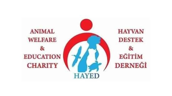 Charity News & Events – week ending 02 March 2019 - all about HAYED