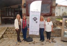 Charity News & Events – week ending 23 February 2019 - Inaugural meeting of Animal Care Uzumlu (ACU)