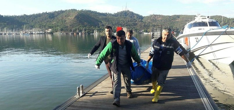 Fethiye Times News – Week Ending 05 January 2020