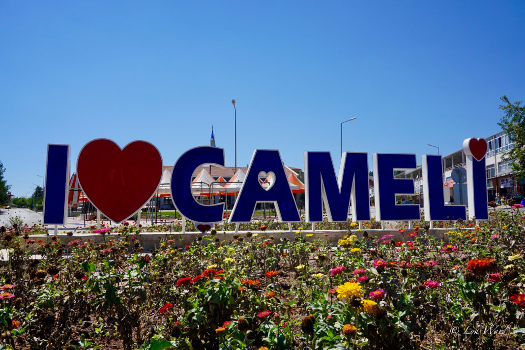 Discover Çameli and experience all it has to offer
