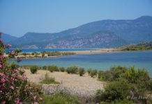 Controversy surrounds plan for new turtle hospital at Iztuzu Beach