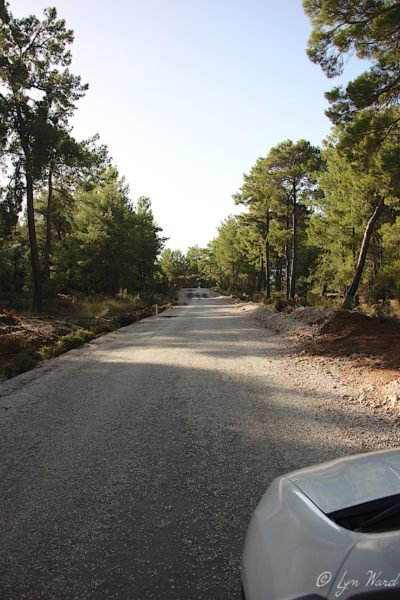 Road trips - getting to know roadside Turkey