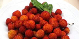 Koca Yemiş - the mountain strawberries that grow on trees