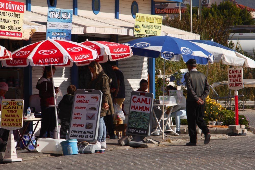 Bait sellers...open for business every day