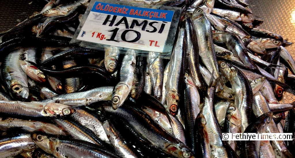 Anchovy (Hamsi) for sale on the Fethiye Fish Market