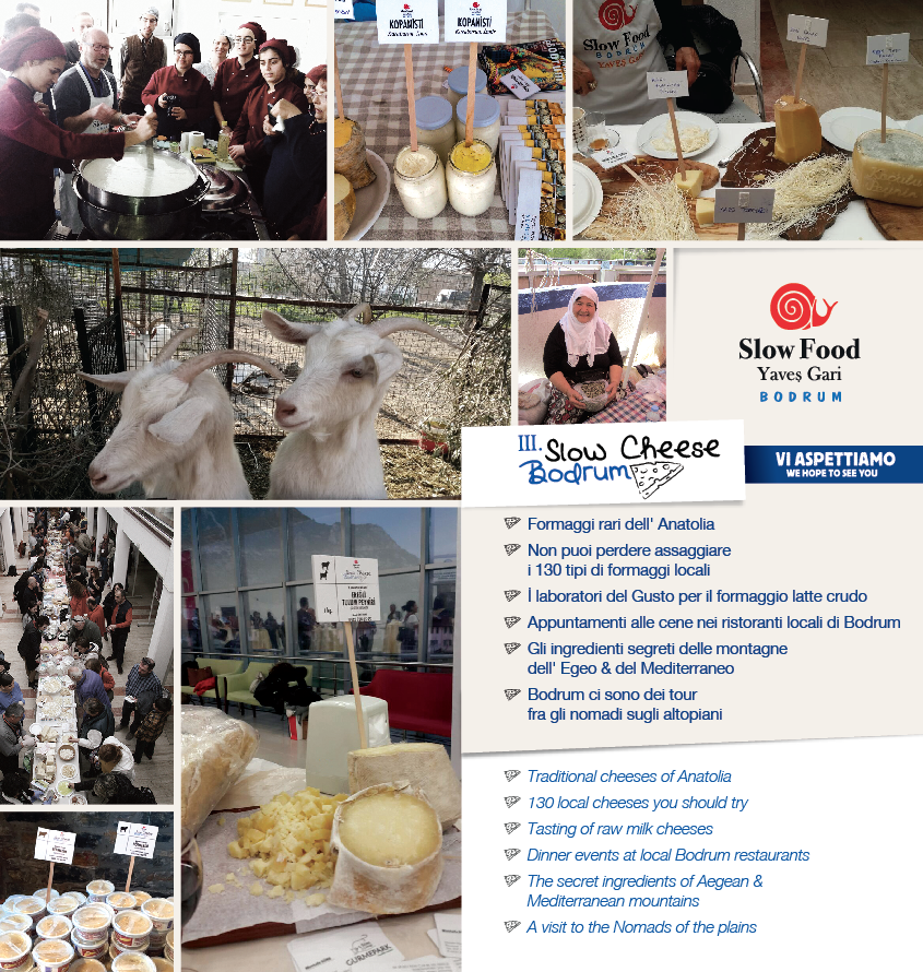 Slow Cheese Bodrum 2019
